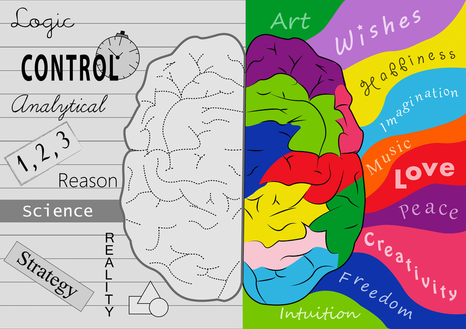Engage Your Whole Brain -The Power of Creativity